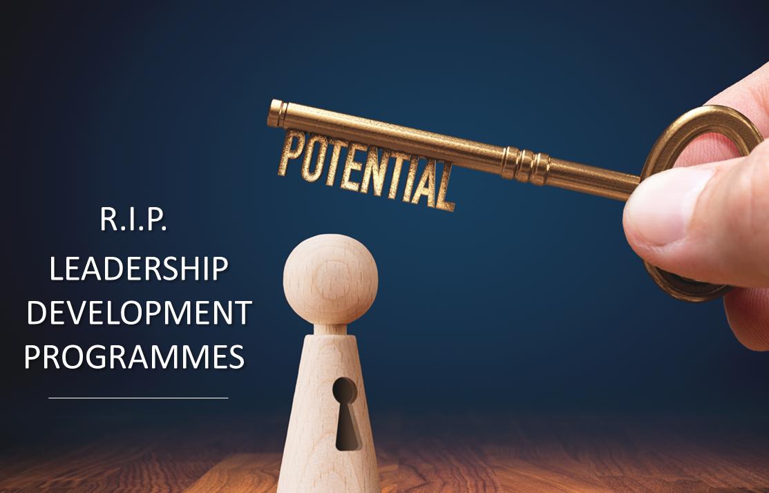 R.I.P. Leadership Development Programmes