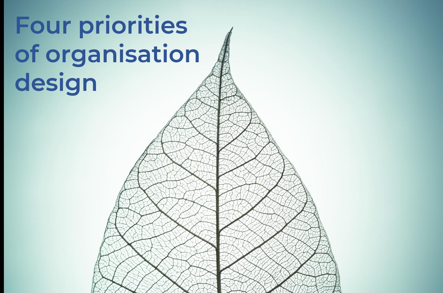 Four priorities of organisation design